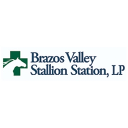 Brazos Valley