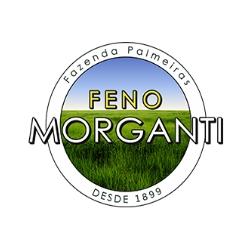 Feno Morganti